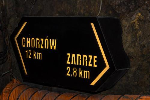 krolowa-luiza (2)