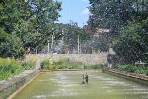 krynica-fontanna