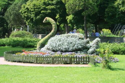 krynica-labedz-z kwiatow