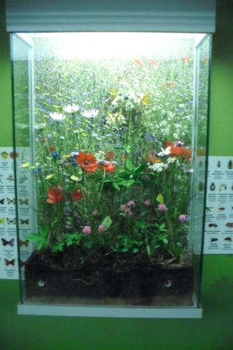 muzeum-gornoslaskie17