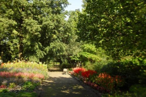ogrod-botaniczny-zabrze