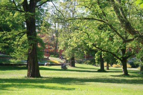 park-plawniowice