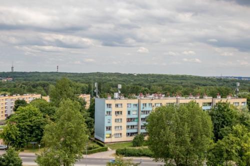 chorzów-szyb9