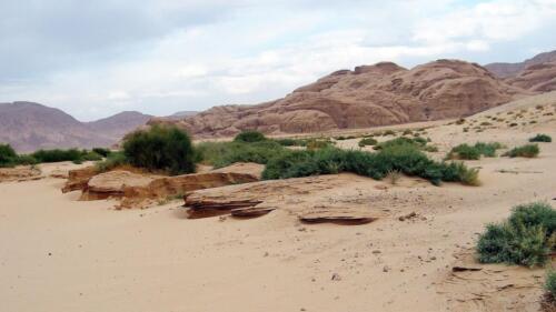 wadi widok3-foto r.frej