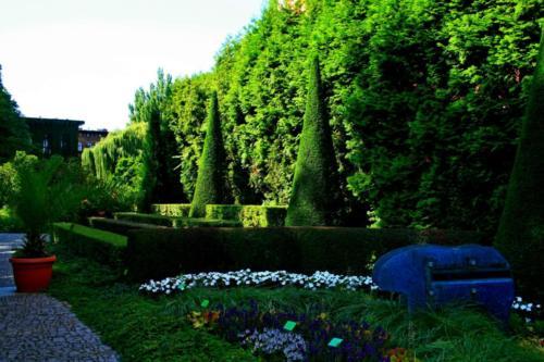 ogrod-botaniczny3