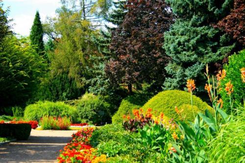 ogrod-botaniczny7