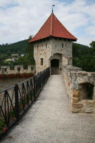 zamek-tropsztyn-w-wytrzyszczce-3