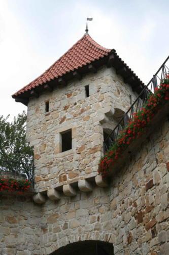 zamek-tropsztyn-w-wytrzyszczce-5