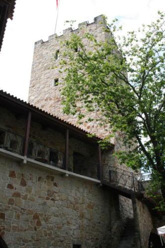 zamek-tropsztyn-w-wytrzyszczce-6
