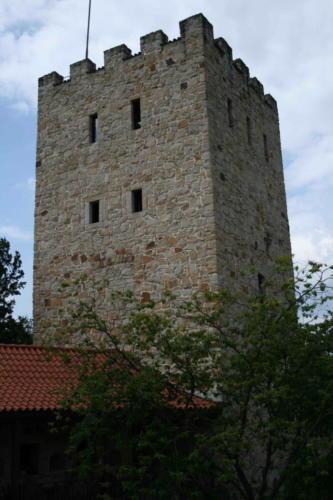 zamek-tropsztyn-w-wytrzyszczce