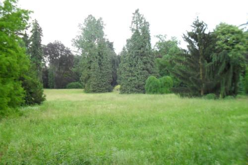 park-w-buchlovicach-2